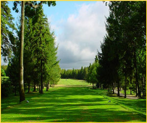 Club de golf l vis chaudi res appalaches qu bec for Golf du bic forfait